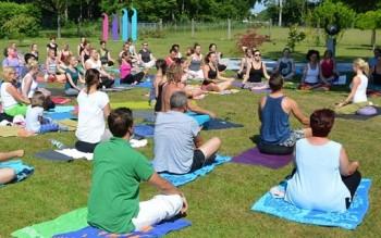 Swenja Falk Lotuseffect Yoga