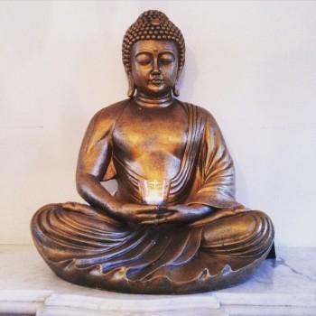 Buddha in HH