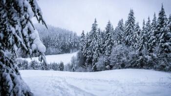winter-273403_1920